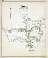 Rose 002, Wayne County 1904